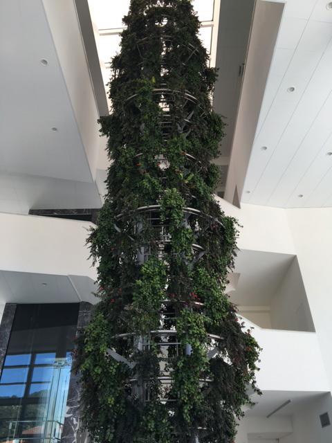 composizioni floreali e allestimenti negozi eventi con i fiori